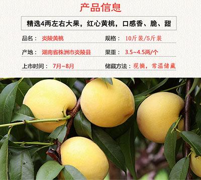 炎陵黄桃产品信息里表达了炎陵黄桃成熟的时间