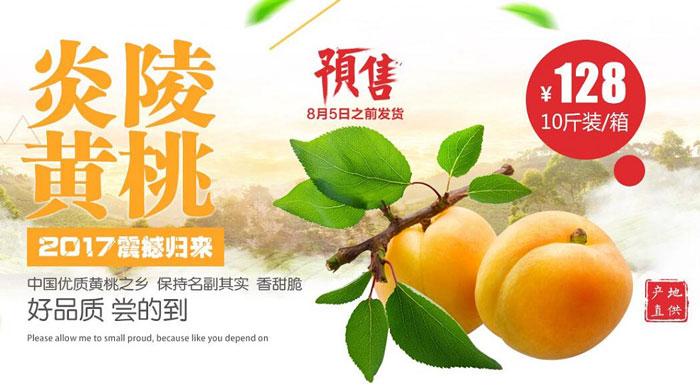 2017年最新炎陵黄桃价格,炎陵黄桃多少钱一斤?