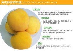 黄桃的营养价值,黄桃的功效与作用