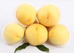 炎陵黄桃的营养价值,株洲炎陵黄桃的功效