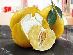 柚子的功效与作用,柚子食用禁忌