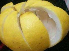 柚子皮的功效与作用及禁忌