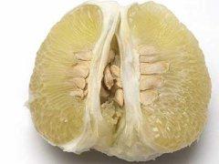来月经可以吃柚子吗,做完人流可以吃柚子吗
