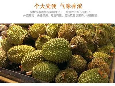 水果罐头黄桃_一个榴莲大概多少钱,中国哪里的榴莲最便宜-水果洽购