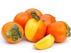 血糖高可以吃柿子吗,糖尿病人可以吃柿子吗