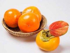 柿子去涩最快的方法,吃了涩柿子怎么办