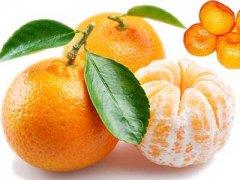 橘子的营养价值,橘子的营养成分