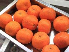 橘子皮的功效与禁忌,新鲜橘子皮的功效