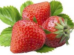 草莓什么时候成熟,草莓几月份成熟
