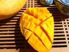 哺乳期可以吃芒果吗,哺乳期吃芒果会回奶吗