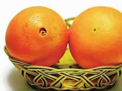 橙子与橘子的区别,柚子和橙子的区别