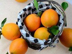 脐橙和橙子的区别,脐橙是橙子吗