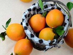 全世界橙子的种类,如何挑选橙子