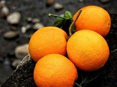 什么品种橙子最甜,橙子有哪些种类