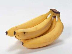 煮香蕉的功效与作用,煮香蕉的做法