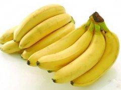 香蕉生长在什么地方,香蕉长在树上还是地上
