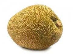 吃菠萝蜜过敏怎么办,吃菠萝蜜过敏什么症状