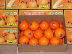 赣南脐橙多少钱一斤,赣南脐橙几月份成熟最好吃